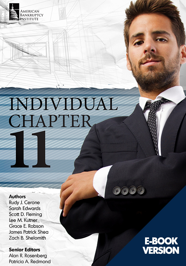 Individual Chapter 11